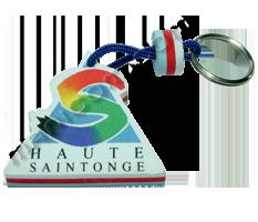 saintonge.manicom.com