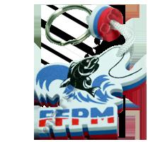 ffpm.manicom.com
